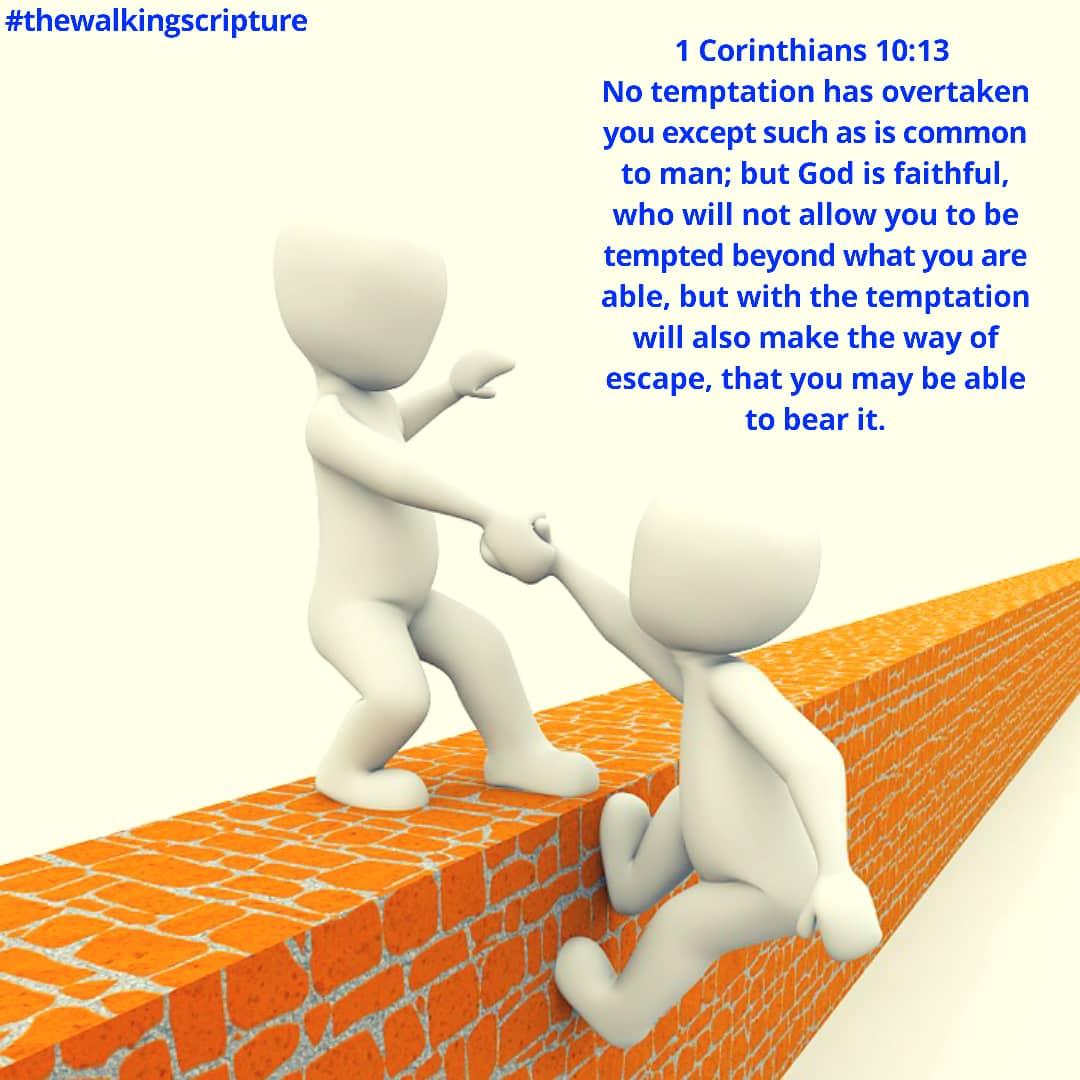 The Walking Scripture (11)
