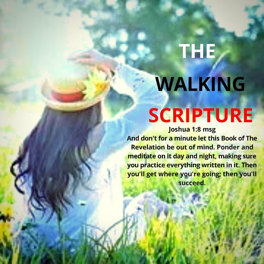 The Walking Scripture (6)